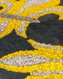Flower petals in vertical Stock Photo