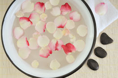Flower petals in wash basin Stock Images