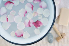 Flower petals in wash basin Royalty Free Stock Images