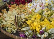 Flower petals. In a wooden basket Stock Images