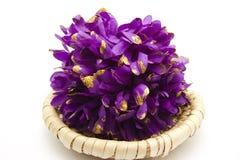 Flower on phloem plate Stock Image