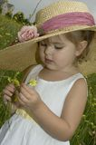 Flower Picker. Little girl with large brim hat picks flowers Stock Photography