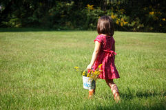 Flower Picking. Four year old girl picking flowers in a buckets Royalty Free Stock Photography