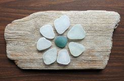 White flower made from sea glass on sea wood, Lithuania royalty free stock photography