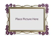 Flower Picture Frame Stock Images