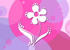Flower-on-a-pink-background Royalty Free Stock Photos