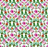 Flower, Pink, Flora, Pattern stock images