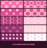 Flower pink patterns Royalty Free Stock Images