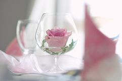 Flower of rose in a glass like table decoration stock photo