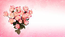 Flower pink roses in heart Royalty Free Stock Photos