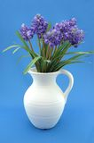 Flower Pitcher. Floral arrangement in ceramic pitcher. Blue background Stock Photo