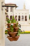 Flower, Plant, Flowerpot, Houseplant stock photo