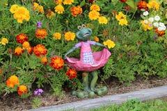 Flower, Plant, Garden, Flowering Plant