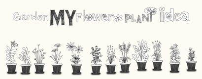 Flower Plant pencil art line Stock Photos