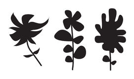 Flower Plant Vector Silhouette. Vector illustration of abstract floral silhouettes Stock Images