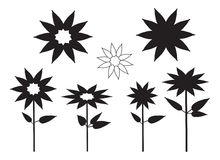 Flower Plant Vector Silhouette. Vector illustration of abstract floral silhouettes Royalty Free Stock Photography
