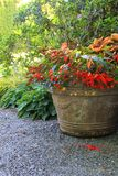 Flower planter Royalty Free Stock Photography