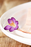 Flower on the plate Stock Photography