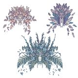 Flower Plumage Pastel Retro Vintage Bouquet Set Royalty Free Stock Photography