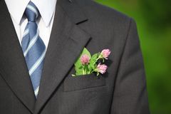 Flower in the pocket of suit Royalty Free Stock Image