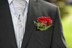 Flower in the pocket of the suit Stock Photo