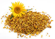 Flower pollen Stock Photo