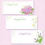 Flower postcard wild flower Stock Image