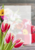 Flower Postcard witn Place for Your Text Stock Photography