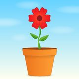 Flower in pot Stock Photography