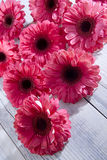 Flower pot. Red gerberas rely more on the table royalty free stock photos