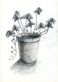 Flower pot. Hand drawn clay flower pot. The plant has butterfly-like leaves Royalty Free Stock Photography
