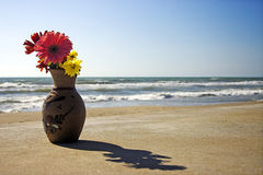 Flower pot. A flower pot on the sea stock photography