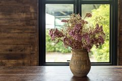 Flower pot in coffee cafe. Dried flowers in a vase. Sunrise at the window. royalty free stock photography