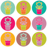 Flower in pot color set on white background. Flower in pot color circle set on white background Royalty Free Stock Photos
