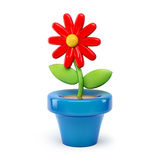 Flower in pot 3d cartoon  on white background Stock Image