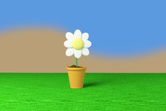 Flower and pot Royalty Free Stock Image