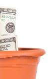 Flower Pot and Dollar Bills Royalty Free Stock Photo