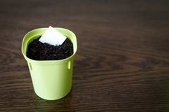 Flower pot with earth and white paper. For writing the date and name of the plant royalty free stock image