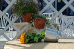 Flower pot fallen down stock image