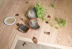 Flower pot fell to the flooring. A flower pot feel to the flooring  background Stock Photo