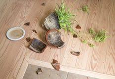 Flower pot fell to the flooring Stock Photo