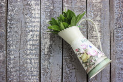 Flower pot filled with sage leafs on wood background. Metallic flower pot filled with sage leafs on old wood background Stock Image