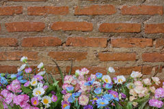 Flower pot in front of a brick wall Royalty Free Stock Photo