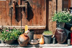 Flower pot in front of Korean traditional house Royalty Free Stock Images