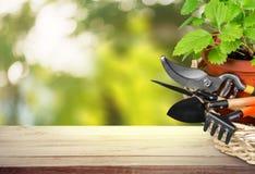 Flower Pot with gardening utensils on wooden Stock Photos