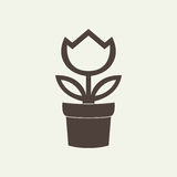 Flower in pot icon isolated on white background. Flower in pot brown icon isolated on white background Royalty Free Stock Photography