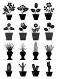 Flower pot icons Royalty Free Stock Images