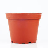 Flower pot isolated Royalty Free Stock Image