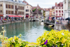 Flower pot over the canals in Annecy, France Stock Image