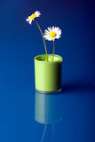 Flower Pot with paint Royalty Free Stock Photo